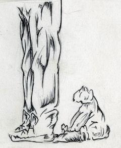 marmot_tail_large1_ecologyoffear[1]